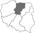 Andrzej Niezgoda